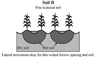 Spacing of furrows depends on proper spacing of plant. Furrows are 8-30 cm.
