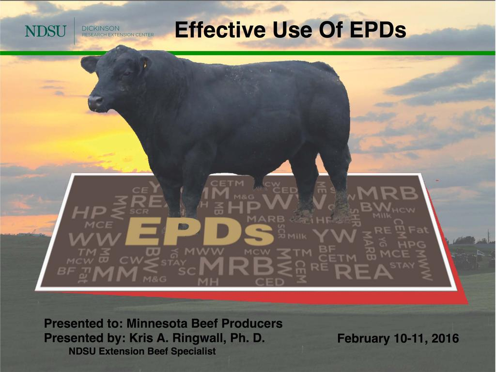 Presented to: Minnesota Beef Producers Presented by: Kris A.
