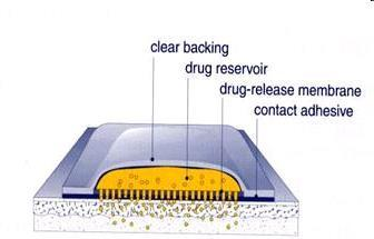 (1) Liner - Protects the patch during storage. (2) Drug - Drug solution in direct contact with release liner.