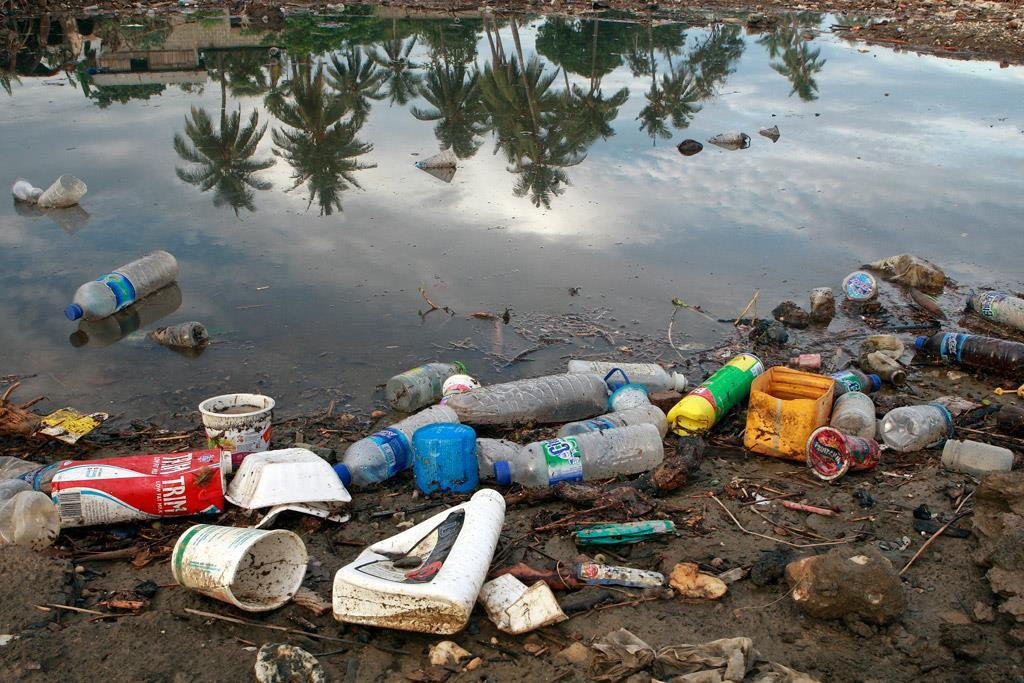 Annex V - Garbage Garbage, especially plastics that do not degrade quickly, may entangle or kill animals, and poses a sever threat to
