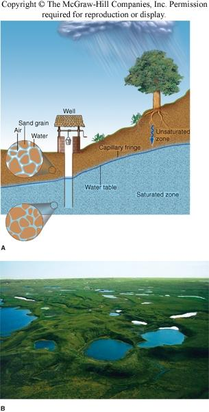 The Water Table Subsurface zone in which all rock openings are filled with water is the saturated zone Water table, top of the saturated zone