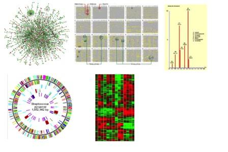 Integration of omics-data The Challenge: How to integrate extreme abundances of heterogeneous data from very