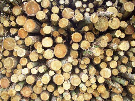 What kind of wood is required? First call would be on small roundwood.
