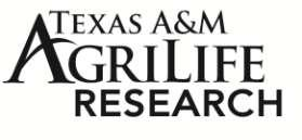 Forage-Livestock Research Progress Report Texas A&M AgriLife Research
