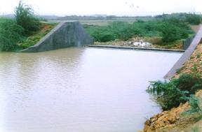 Tata Chemicals TISES Projects - Berkeley Mithapur : Project 1: The area is extremely drought prone, where average annual rainfall is about 10 inch.
