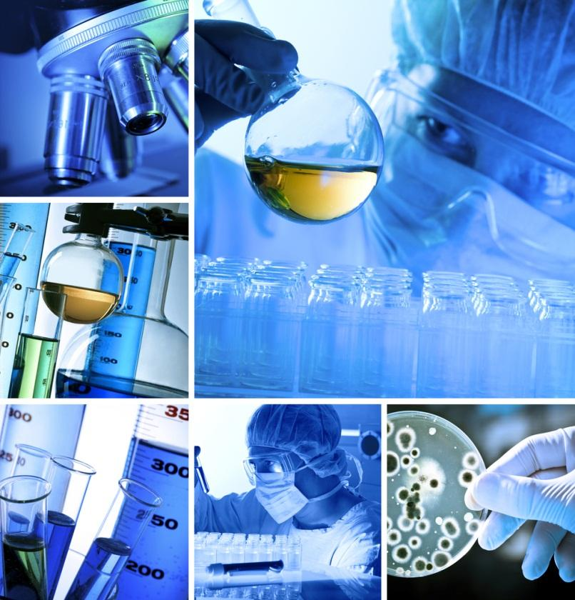 ECOTOXICOLOGY Branch of toxicology Toxic effects of chemicals and physical agents on living organisms,