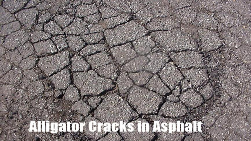 Fatigue = Alligator Cracking a series of interconnected cracks caused by the