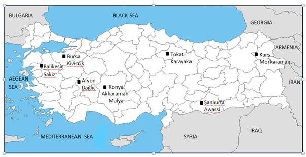 478 F. Özdil et al.: Genetic characterization of the Ovar-DRB1 gene in Turkey Figure 1. The location of the samples used for DNA sequencing (drawn by Fatma İhan). Figure 2.