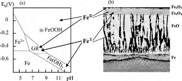 (a) Electrochemical potential (E) - ph diagram for Fe in aqueous solution containing chloride ions and (b) a layered structure of thermally formed oxide scale on steel At high temperatures, more than