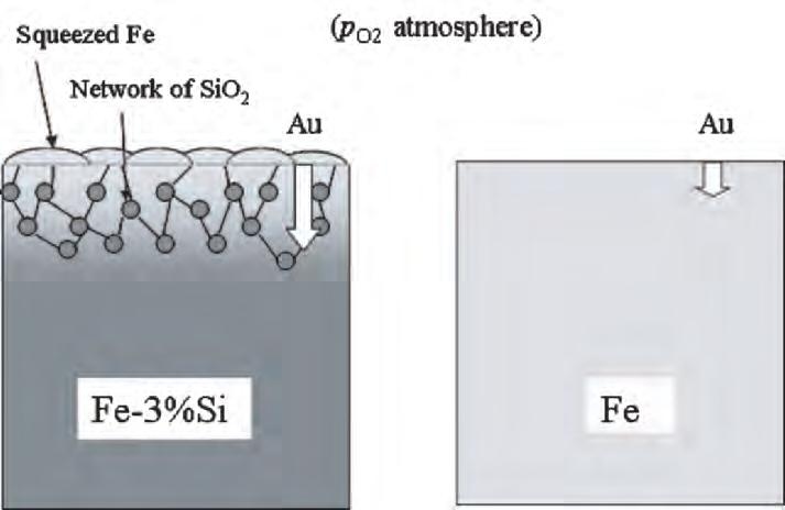 7 Surface Analysis of Oxides and Corrosion Products 147 Fig. 7.14. Schematic diagram of the cross section of the surface layer formed in Fe-3%Si alloys by selective oxidation.