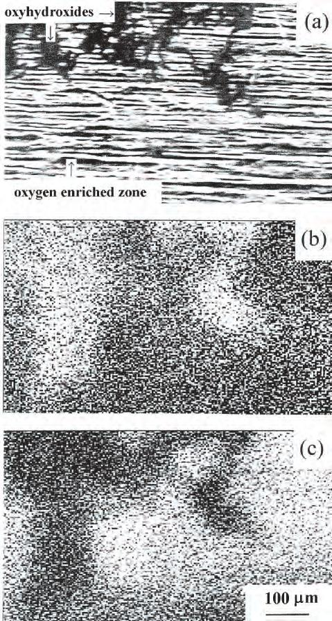 7 Surface Analysis of Oxides and Corrosion Products 151 Fig. 7.18.