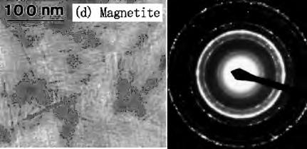 and their respective selected electron diffraction patterns