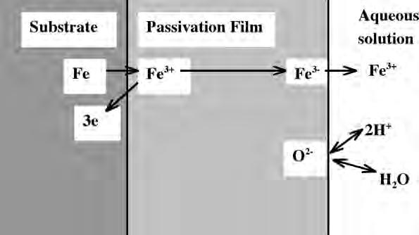 2 Passivation Oxide Films and Rust Layers on Iron 21 Fig. 2.2. Model of ionic migration of iron electrode passivated under the stationary state.
