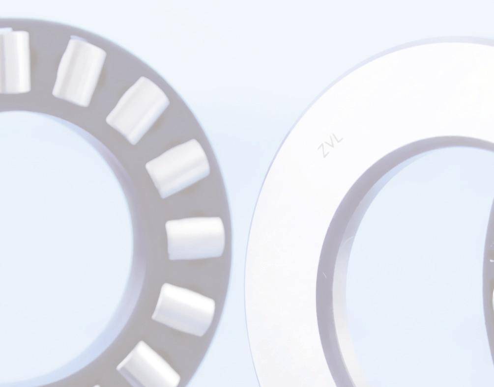 BEARINGS FOR MINING AND PROCESSING INDUSTRY ZVL