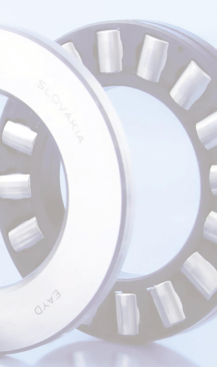 BEARINGS FOR HEAVY INDUSTRY Conveyors in