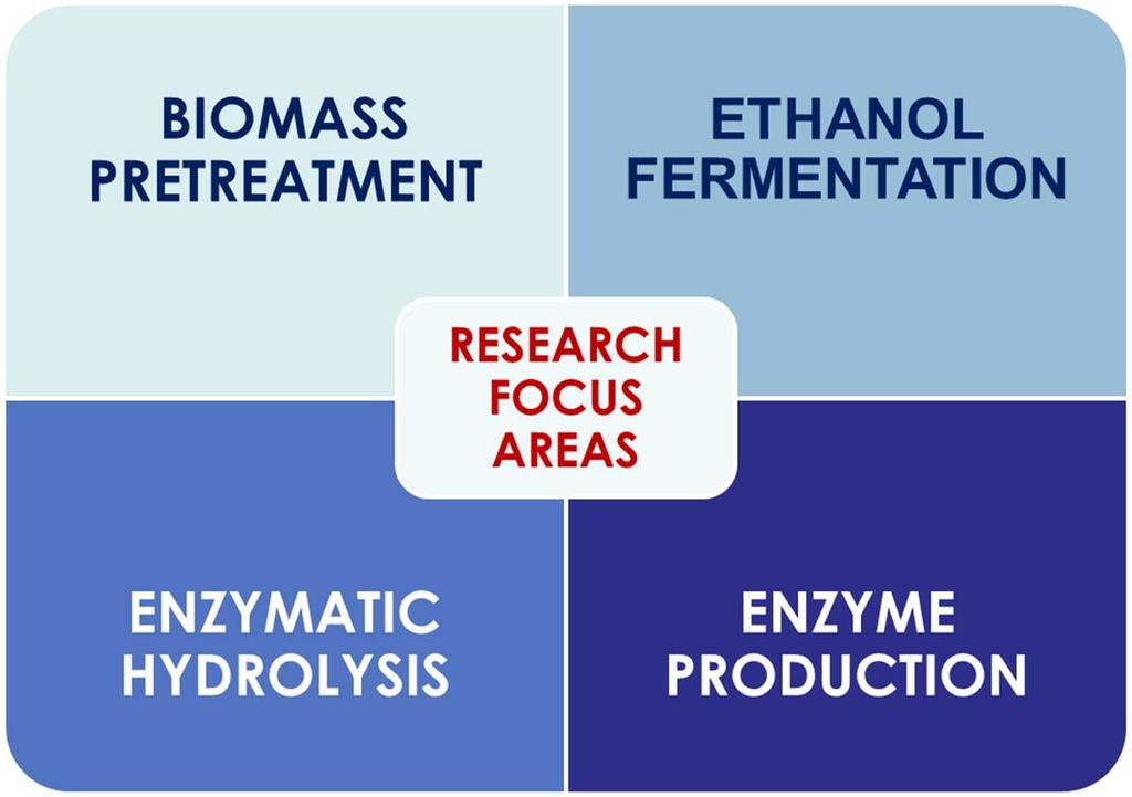 1)ENZYME HYDROLYSIS: Maximizing cellulose hydrolysis with minimum enzyme usage.