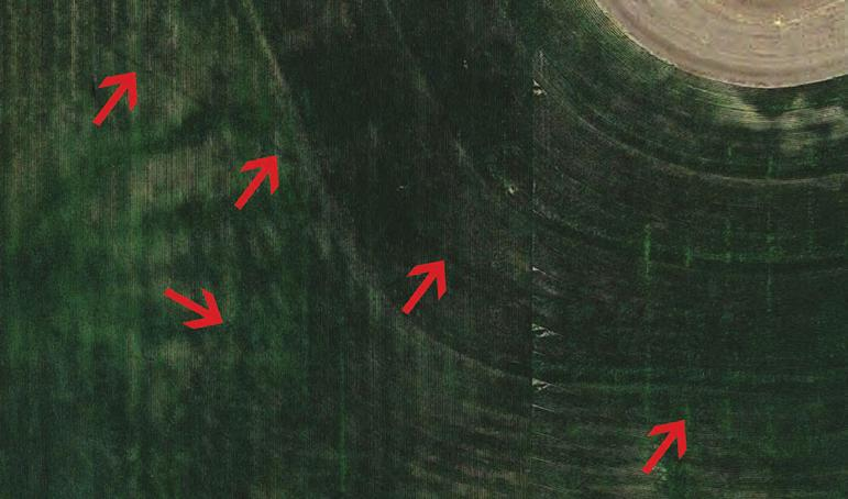 pipelines that were installed diagonally across farm fields.