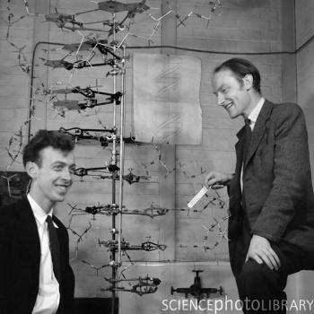 Watson & Crick James Watson, an American biologist, and Francis Crick, a British physicist, used Franklin s X-ray