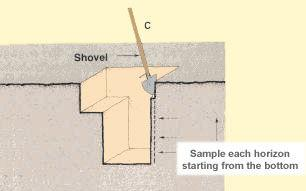 Clean the whole profile Sample top horizons in an undisturbed area The auger boring method The auger boring method is a way to obtain soil