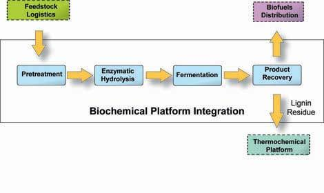 Biochemical Conversion End product is usually ethanol A process that is similar to that of producing corn ethanol Pretreatment Separates the cellulose