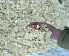 Biomass Resources and Issues Wood Residues Sawdust Wood