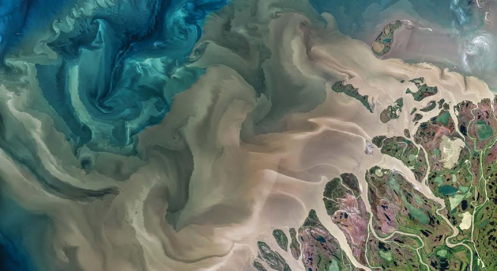 RESEARCH SPOTLIGHT Yellow Detritus in the Oceans May Help Reduce Warming In this image of of the Mackenzie River Delta flowing into the Beaufort Sea in July 2017, captured by NASA s Landsat 8