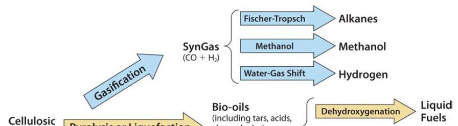 Various Routes to Biofuels January Science 27, for