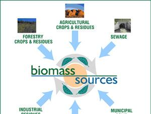 Biomass http://dailyenergy.net/search/biomass Definition: All living plant matter as well as organic wastes derived from plants, humans, marine life, and animals.