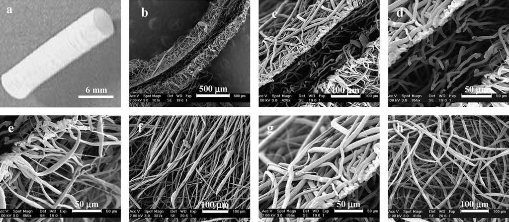The black arrows show the connectivity at the interface between two adjacent electrospun membranes.
