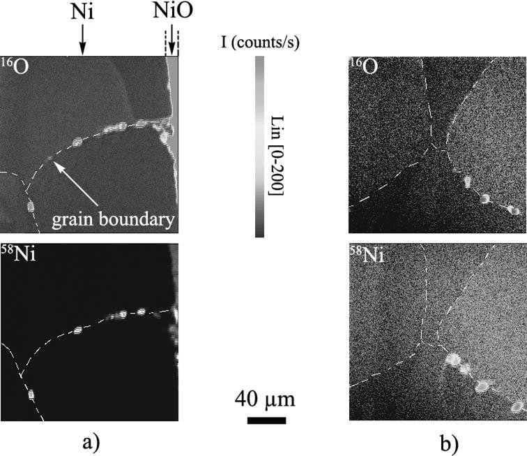 Figure 7. SIMS images of 16 O and 58 Ni obtained in 1-mm thick nickel foils oxidized 48 h at 1000 C in laboratory air cross sections.