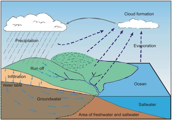 Groundwater Movement Movement of ground water through pores and fractures is relatively slow