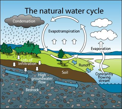 Topic 3, Subtopic A of Review Handbook or Chapter 10 of Earth Science Book Groundwater 97% of Earth s water is found as saltwater in Earth s oceans. That leaves only 3% for freshwater!