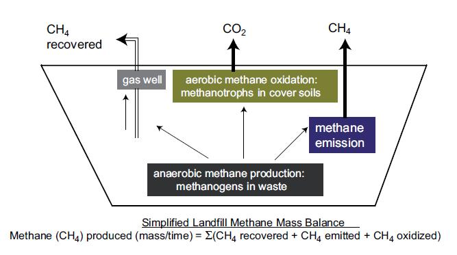 Methane pathways in a