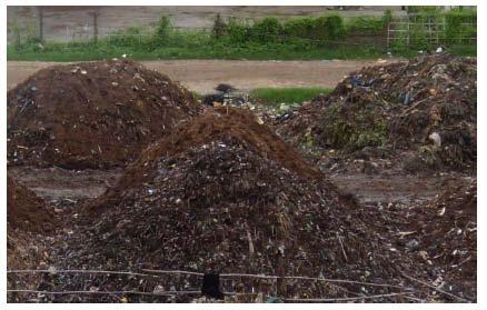 Successful composting requires Good source separation Public awareness