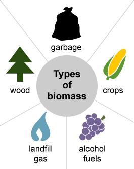 Biomass Biomass is organic material that comes from plants and animals, and is a renewable source. Burning is only one way to release the energy in biomass.
