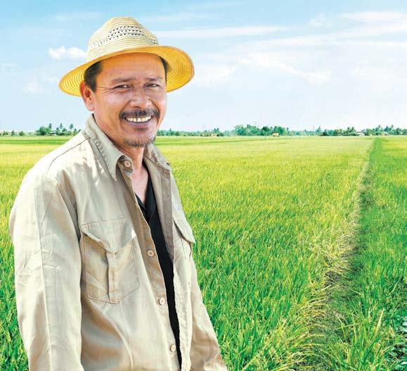 NESTLÉ IN SOCIETY REPORT 2016 55 Rural Development G4-DMA: Local Communities, G4-EC7, G4-EC8, G4-SO1 NESTLÉ PADDY CLUB Rice is a key ingredient in Nestlé s infant cereals and it is produced in