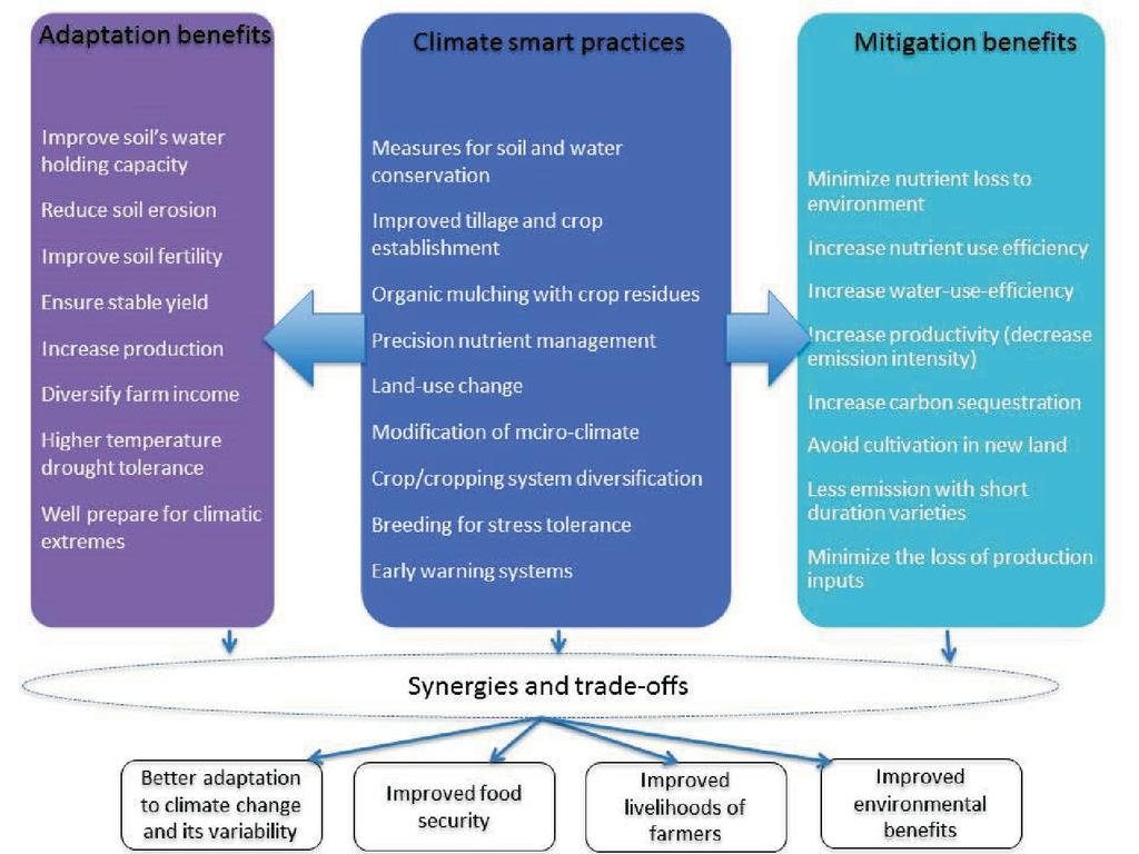 Extended Summaries Vol 3 Pdf Electrical Engineering Progression Plan Nau Climate Smart Agronomy 21 Integrating Change Adaptation And Mitigation In Agriculture