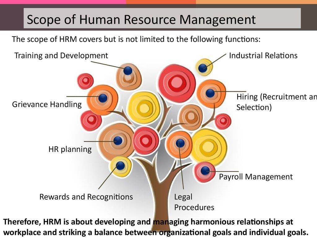 4 function of human resource management