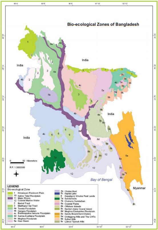 1.4 State of biodiversity and ecosystem services 1.4.1 State of biodiversity Given its small size, Bangladesh has an impressive variety of ecosystems, which support and equally varied flora and fauna.