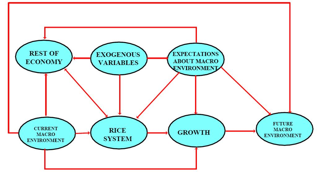 Figure 1: Conceptual framework for assessment of rice policies in Sierra Leone (after IFPRI, 1996) 3 The dynamics involved in the process of rice production, marketing and trade, and the impact of