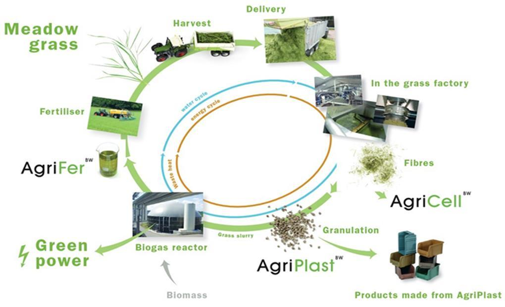 Grass silage provided by seven local farmers, biogas digestate supplied to same farmers as fertilizer Biowert Green Biorefinery, Germany Grass silage to biocomposites, grass eco-insulation, amino